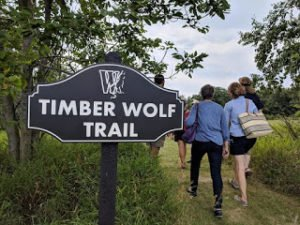 Timberwolf Trail sign to path