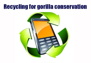 RecycleCellPhoneWeb